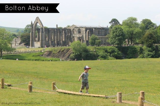 Bolton Abbey Main